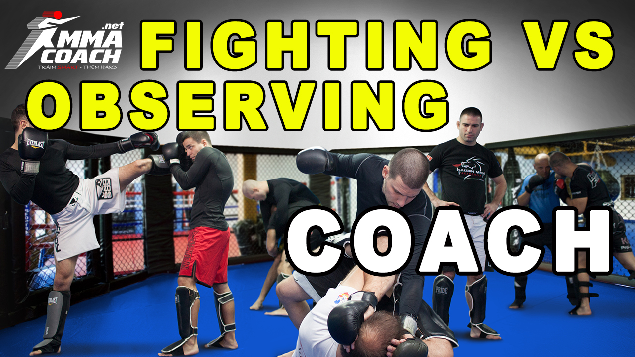 Fighting VS Observing Coach – Which One Is Better?