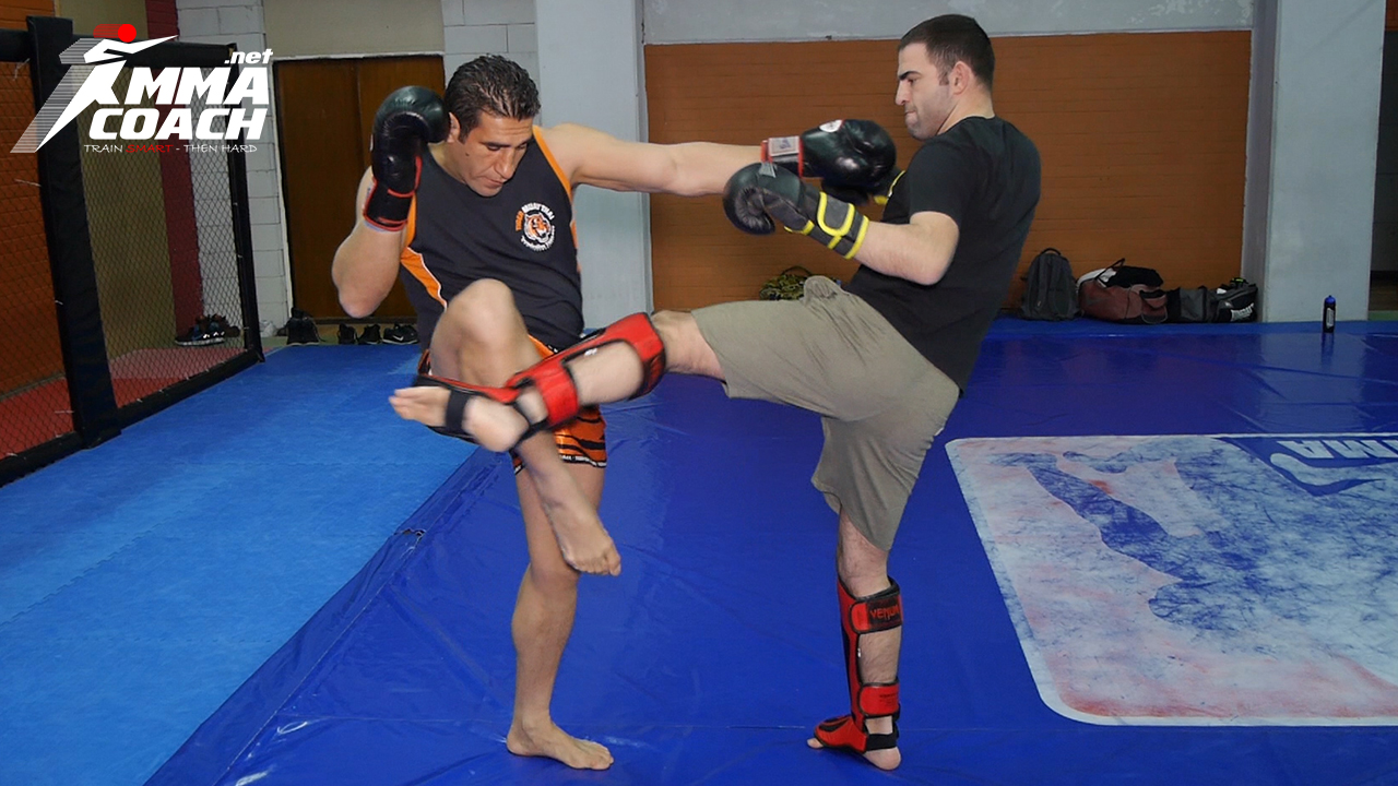 How To Defend & Counter The Middle Kick